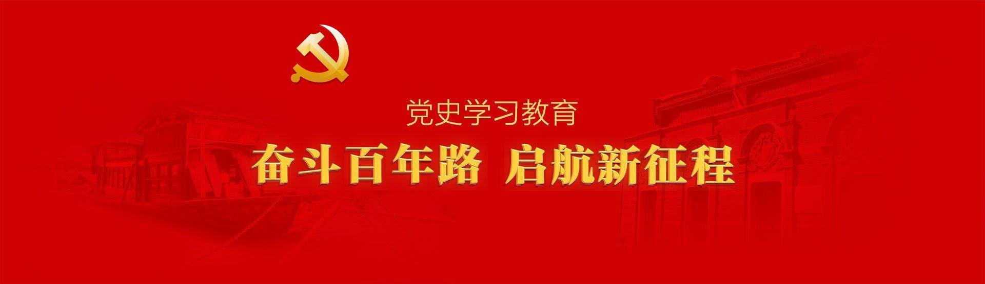 东盛云强夯党史学习教育